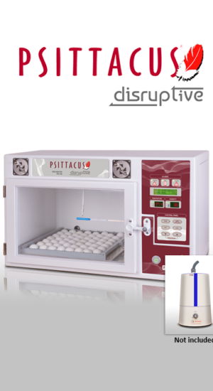 incubadora disruptive