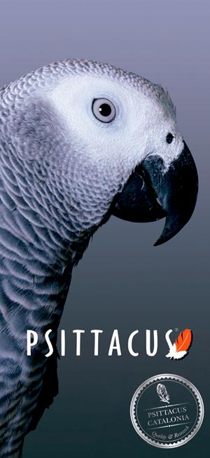 psittacus marca